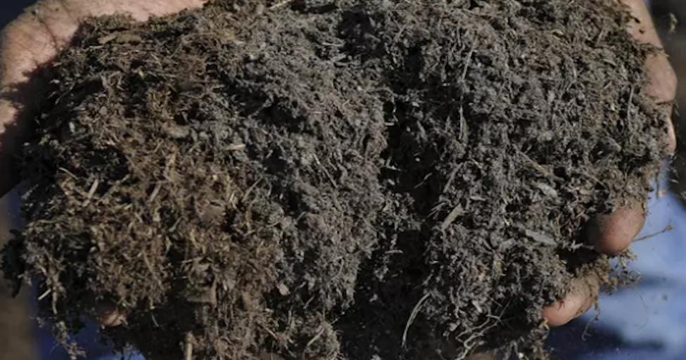 Komposzt vásárlás és Talaj ph mérés és talajjellemzők