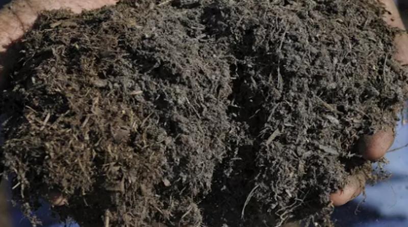 Hogyan vásárolhatunk tömegesen felső talajt, komposztot vagy talajtakarót
