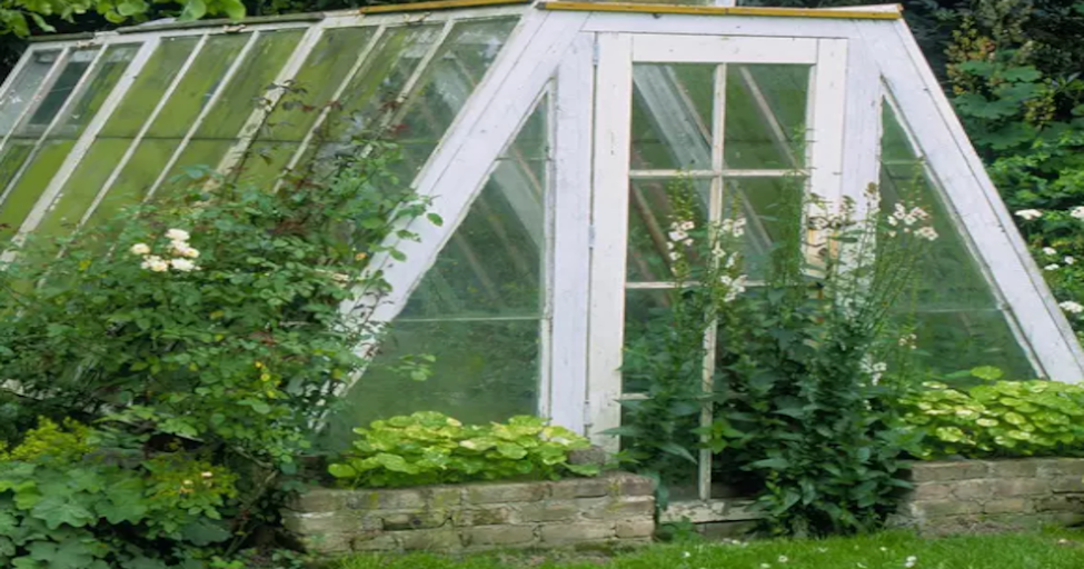Üvegház építés? - Mekkora üvegházra lesz szüksége?