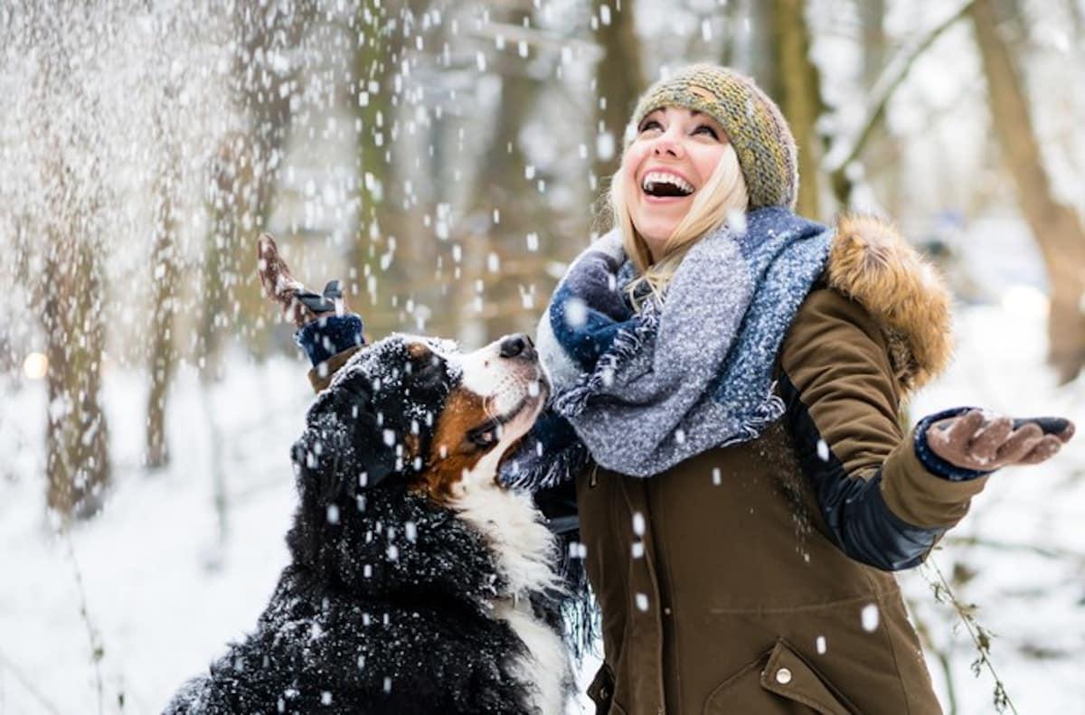 Hideg időjárás és az állatok
