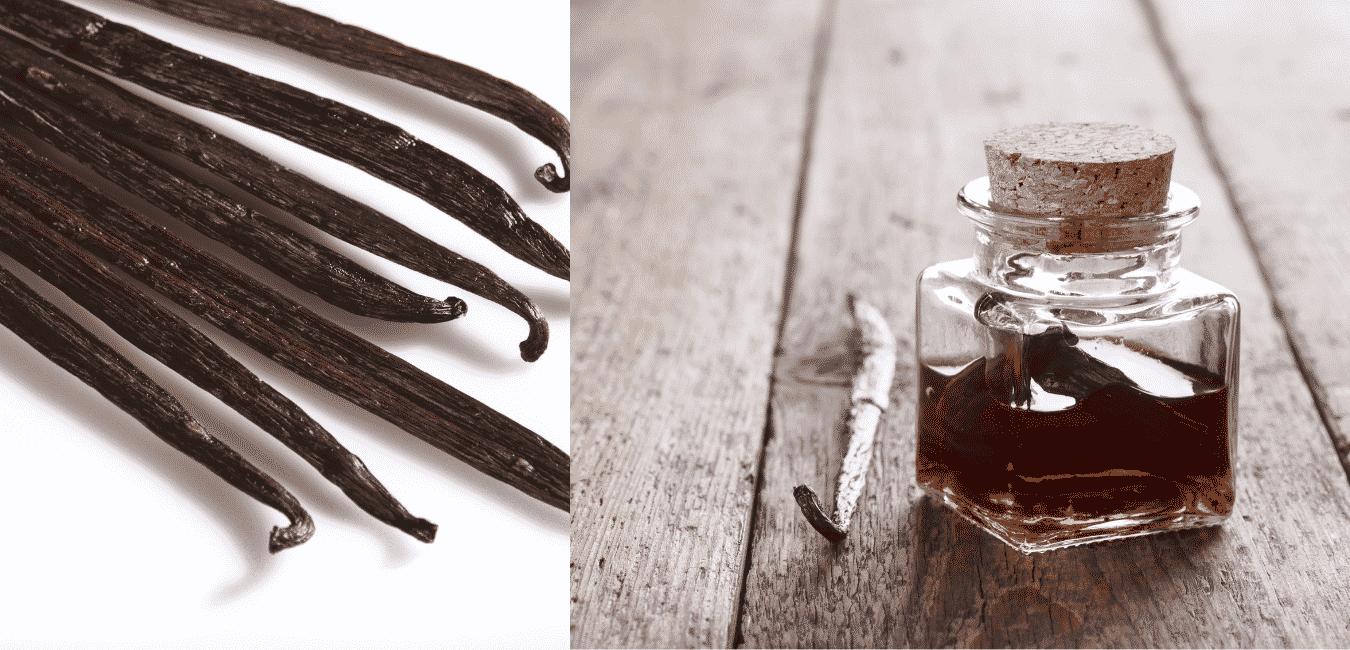 Vanília kivonat és vanília aroma hogyan készül