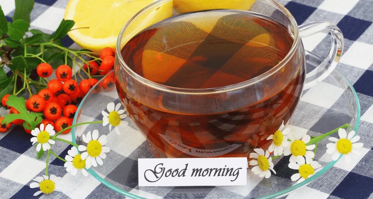 Képeld ezt: egy hosszú nap után készítesz egy csésze kamilla teát, és letelepedsz a kanapén egy kényelmes takaróval, egy zavaró könyvvel és azzal a gőzölgő bögrével. Pihentetően hangzik, igaz? Nem csak a rituálé biztosítja ezt a nyugtató hatást. Kamilla tea mire jó? A kamilla valójában rengeteg meglepő egészségügyi előnnyel büszkélkedhet, a jobb alvástól és az emésztéstől a szorongásig.