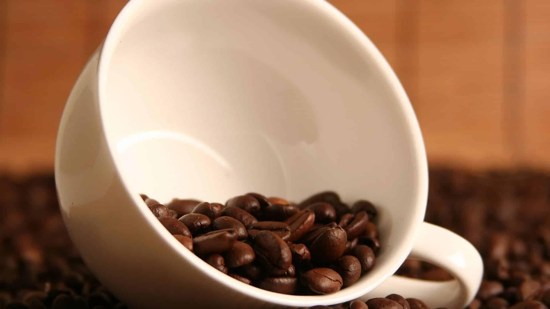 Egy dietetikus tippeket oszt meg a koffein megvonásának elkerülése érdekében, amikor megkönnyíti szokását. Kávé, tea, szóda, energiaitalok ... a koffein különféle formákban fordul elő, de mindegyikben van egy közös jellemző: hihetetlenül nehéz leszokni róla.