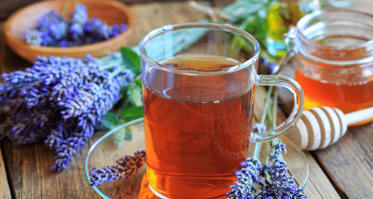 A legjobb 5 levendula tea hatásai előnye, Ah, levendula. Nemcsak nyugtató, álomszerű illatot áraszt, hanem remek teát is készít. A levendulás tea pedig olyan előnyöket jelenthet a test és az agy számára, amelyek miatt érdemes egy csészét főzni.