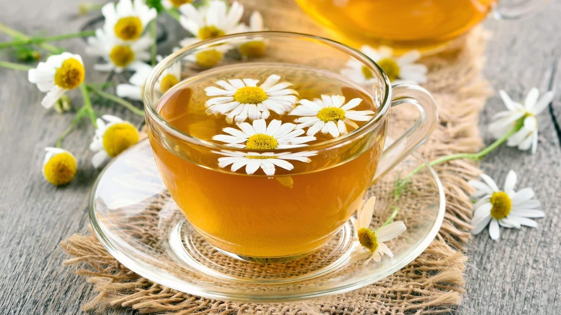 Mi a kamilla teák? Mire jó a kamilla tea? A kamilla egy olyan gyógynövény, amely apró, százszorszéphez hasonló virágokat hoz létre, amelyeket aztán szárítanak és vízbe áztatva kamilla teát készítenek.