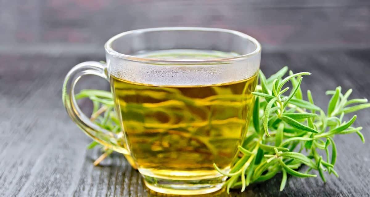 Rozmaring tea: Mire jó és hogyan kell főzni. A rozmaring az egyik legelterjedtebb növényi gyógyszer. Évszázadok óta használják Európában, Ázsiában és Amerikában számos betegség kezelésére. Ma az orvosi kutatások sok ilyen egészségre vonatkozó állítást alátámasztottak. A rozmaring tea fogyasztása nagyszerű módja az immunrendszer erősítésének: ráadásul finom is! A rozmaring tea kellemes fenyő ízt és aromás illatot kínál, amely élénkít és fiatalít. Fedezze fel a rozmaring tea lenyűgöző ízeit, és tudjon meg többet rozmaring tea hatásai, annak egészségügyi előnyeiről, mellékhatásairól és a megfelelő főzési módszerekről.