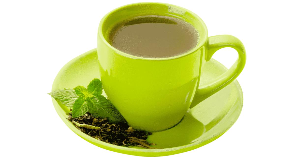 A zöld tea egy egészséges erőmű, amely viharral vette el a világot. Kínában először gyógynövényként használják. A modern időkben egészséges elixír lett belőle, amelyet amerikaiak milliói fogyasztanak naponta. Mára a tudósok és kutatók több ezer tanulmányt végeztek az egészségügy hatékonyságával és zöld tea káros hatásai kapcsolatban. 