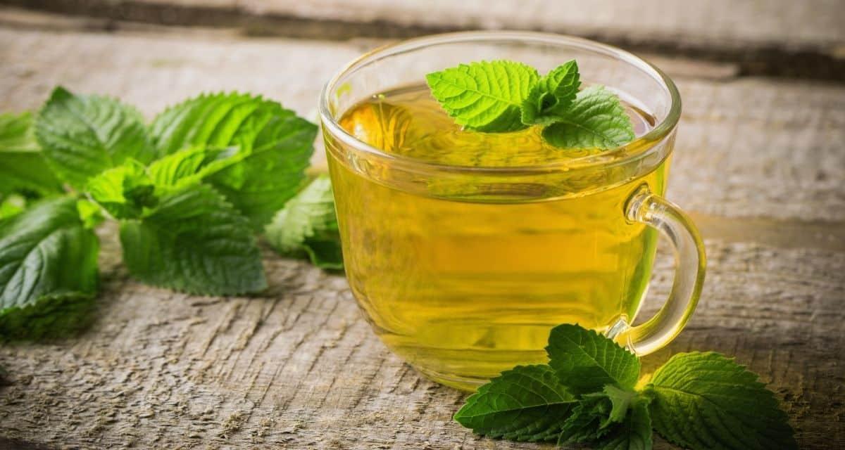 Mi az a borsmenta tea? A válaszokat összeszedtük. A borsmenta teát úgy készítik, hogy a borsmenta leveleket forró vízbe töltik. Fodormenta teát is készíthet a fodormenta levelek felhasználásával.