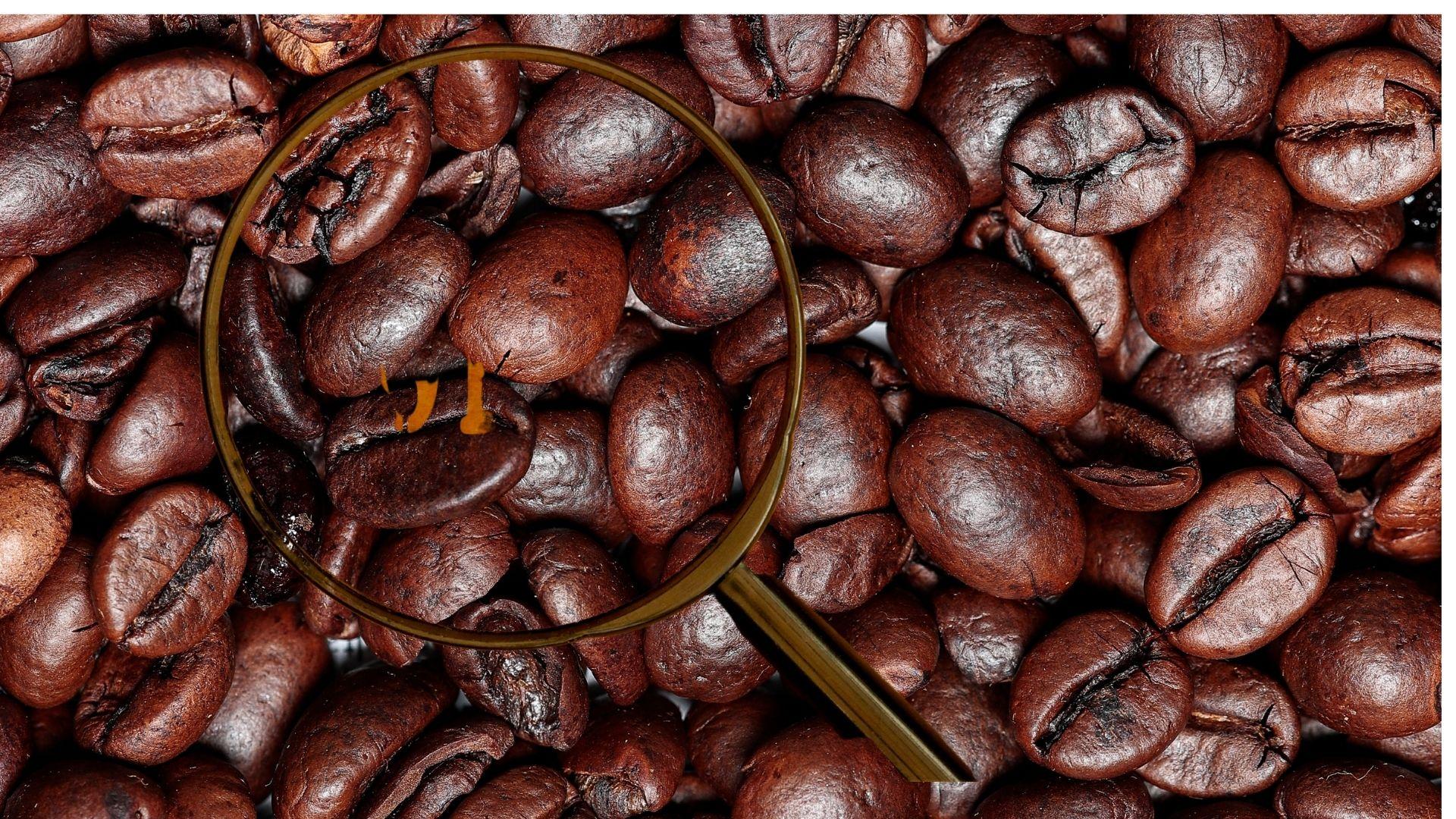 Senki sem tudja pontosan mi a kávé története, hogy mikor és mikor fedezték fel a kávét, pedig számos legenda híres a keletkezéséről.