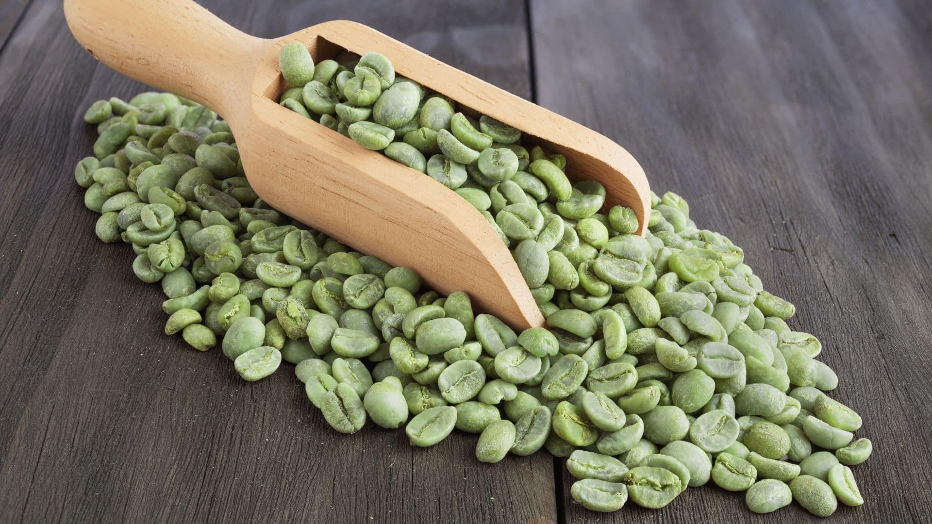 """A """"zöld kávé"""" bab a Coffea gyümölcs kávék magja (bab), amelyet még nem pörköltek meg. A pörkölési folyamat csökkenti az úgynevezett klorogénsav mennyiségét. Ezért a zöld kávébab magas klorogénsav tartalommal rendelkezik, mint a szokásos, pörkölt kávébab. Úgy gondolják, hogy a zöld kávéban található klorogénsav egészségügyi előnyökkel jár."""