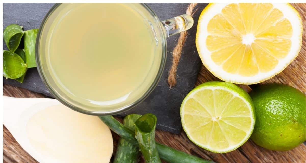 Az aloe vera tea méregtelenítő tulajdonságai miatt hasznos a fogyásban. A legtöbb ember, aki fogyni akar, vagy azért küzd, biztosan tud róla. De amit a legtöbben nem tudnak, az az, hogy miként lehet ezt bevinni az étrendjük és rutinba, hogy egészséges módon fogyjanak.