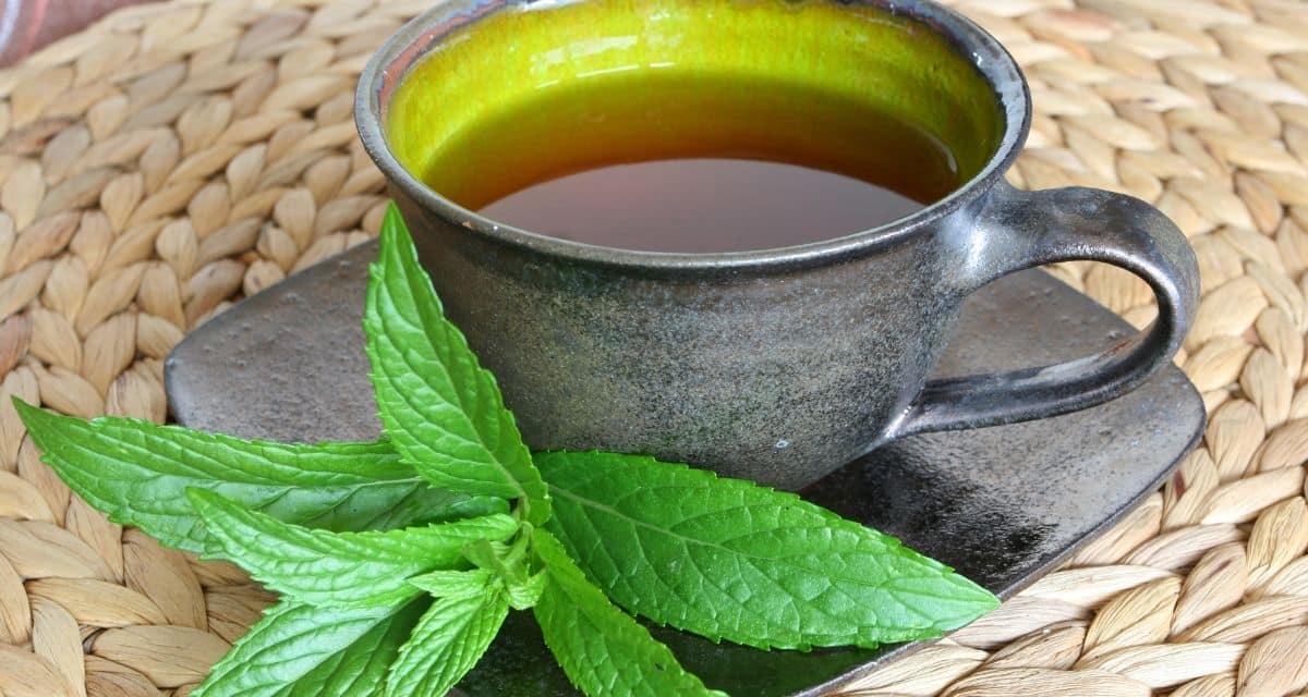 A borsmenta teát úgy készítik, hogy a borsmenta leveleket forró vízbe töltik. Fodormenta teát is készíthet a fodormenta levelek felhasználásával. A borsmenta tea hatása a levelek számos illóolajat tartalmaznak, amelyek forró vízbe áztatva szabadulnak fel, beleértve a mentolt. Ezek együttesen adják a borsmenta teának a frissítő, hűsítő, mentás ízét.