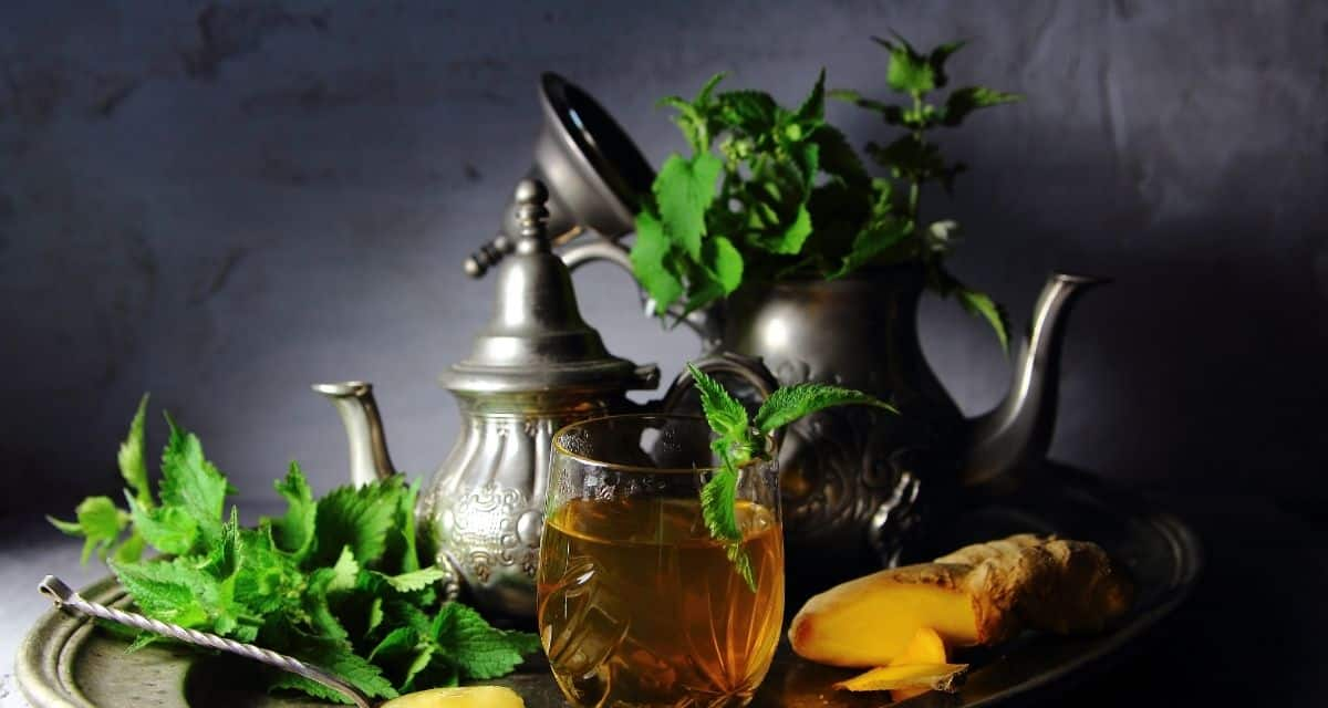 A világba sok túlsúlyos él. Sajnos az emberek többnyire elhanyagolják, amelyet a növényi gyógyszer az egészséges testsúly ösztönzésében játszhat. De mielőtt egyenesen rátérnénk arra, hogy a csalán tea fogyás, hogyan segíti a fogyókúrát.