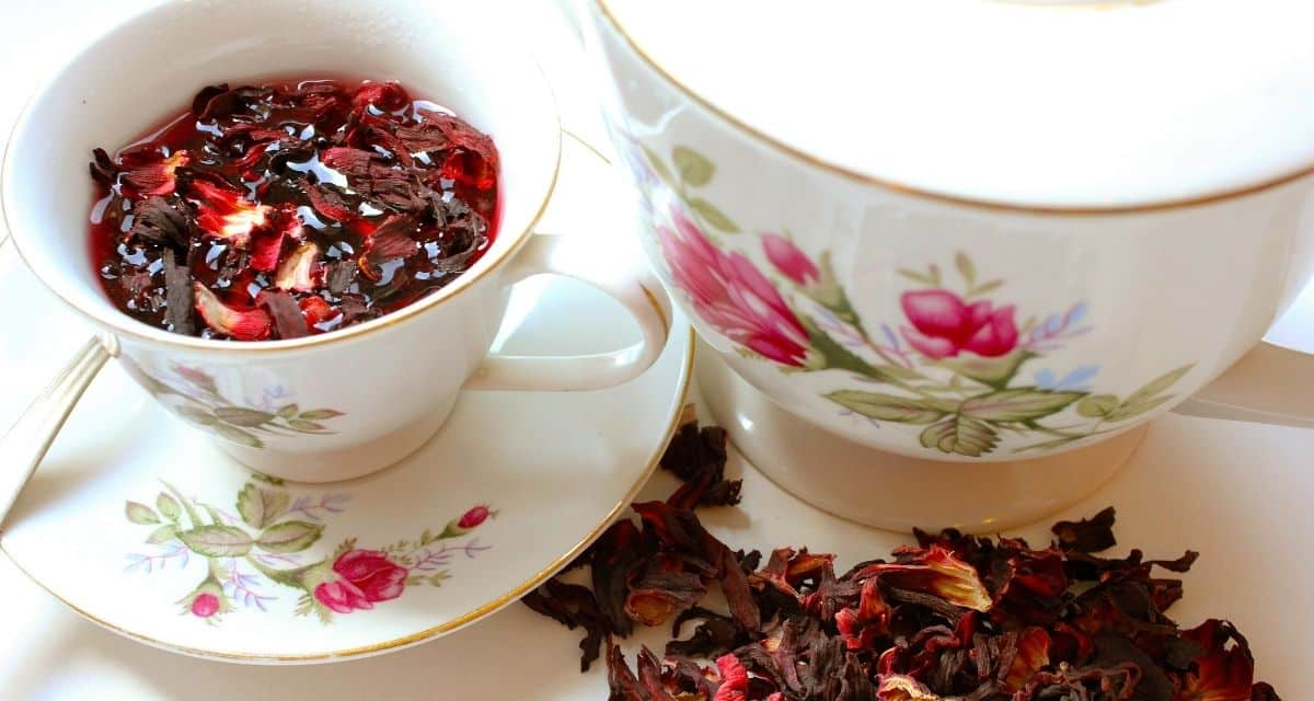 A rózsavíz, a rózsaszirom tea, a rózsa parfümök és a gyönyörű rózsacsokrok nem csak az isteni szagú és gyönyörű dolgok származnak a rózsabokorból. Ami a csipkevirágok mögött rejtőzik, talán még érdekesebb - a csipkebogyó nevű gyümölcs. Csipkebogyó lehet használni készítésére csipkebogyó olaj, finom lekvárok, Csipkebogyóból tea készítése, hogyan kell elkészíteni.