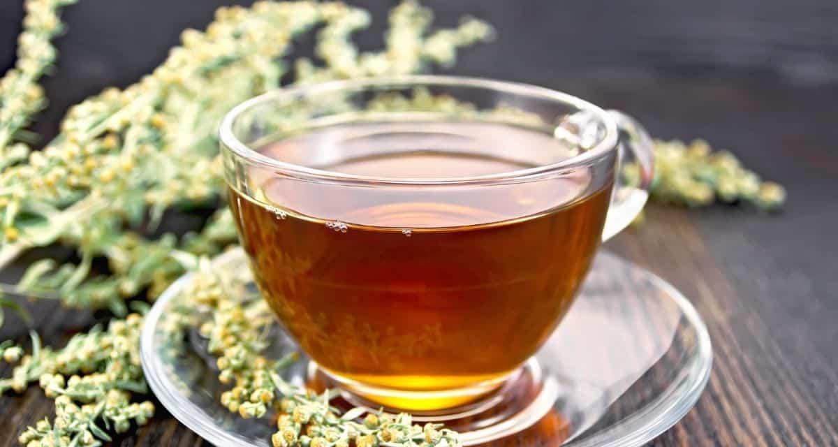 Egynyári üröm tea egy gyógynövény. A föld felett növő részekből gyógyszereket készítenek.