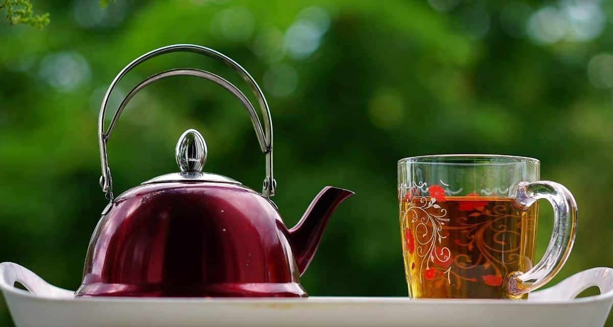 A fodormenta tea 8 előnye az alvás kiváltásától a fogyás elősegítéséig és még sok minden másig! A fogyasztása különféle módokon segíthet nekünk - fodormenta tea hatásai kezdve a mentális stressz és a rossz lehelet enyhítéséről az immunrendszerünk fokozása és a fogyásig.
