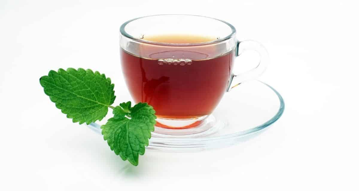 Ismerje meg galagonya tea hatásai ennek a antioxidánsokban gazdag gyógynövénynek a szívre az előnyeit.