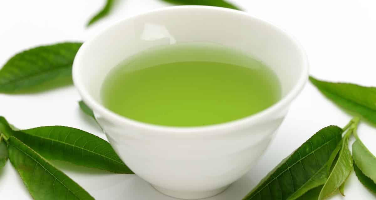 A japán tea sokféle, és mindegyiknek egyedi, eltérő íze és íze van. Áttekintettük a gyakori típusokat, és melyik időpont lenne a legjobb, ha megiszuk őket. Reméljük, hogy ez adna egy tippet róluk, és megtalálja a kedvencét, amellyel kezdheti.