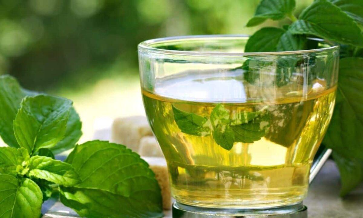 jó tea zsírvesztéshez
