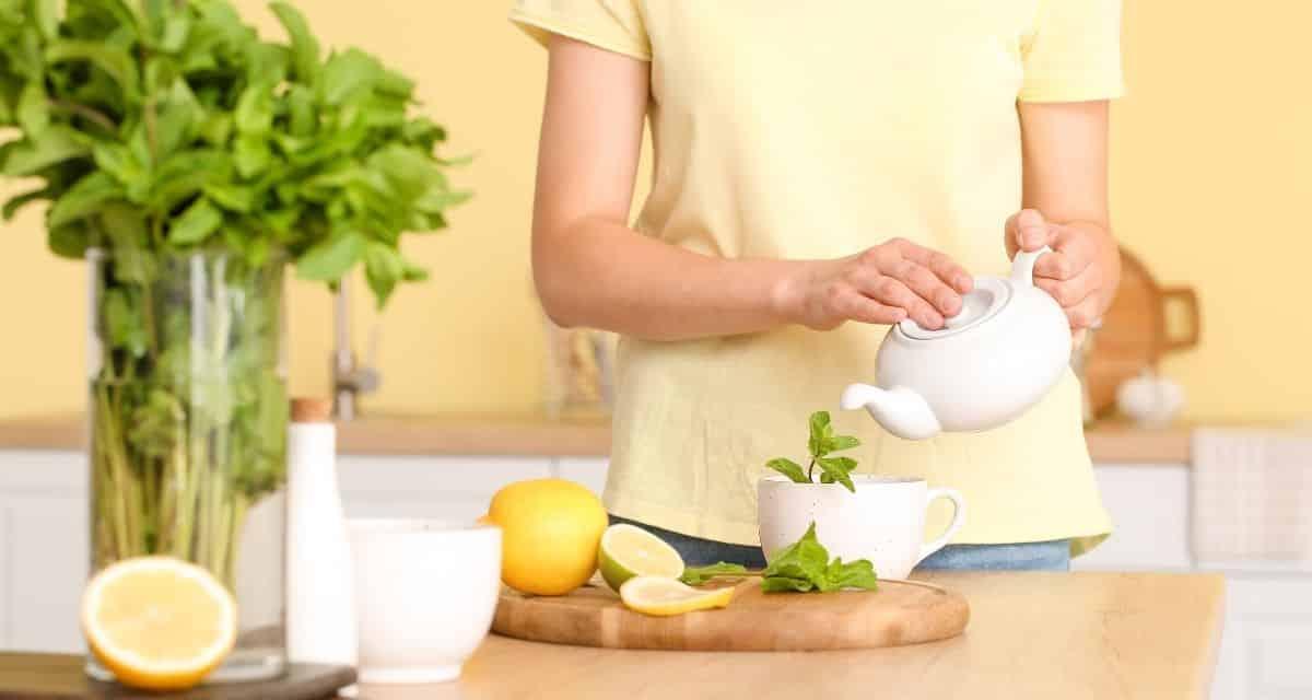 Menta tea recept - Könnyű, aromás és frissítő ital. Menta teát fogyaszt, mely a menta tea készítés módja. Hogyan készül a tea?
