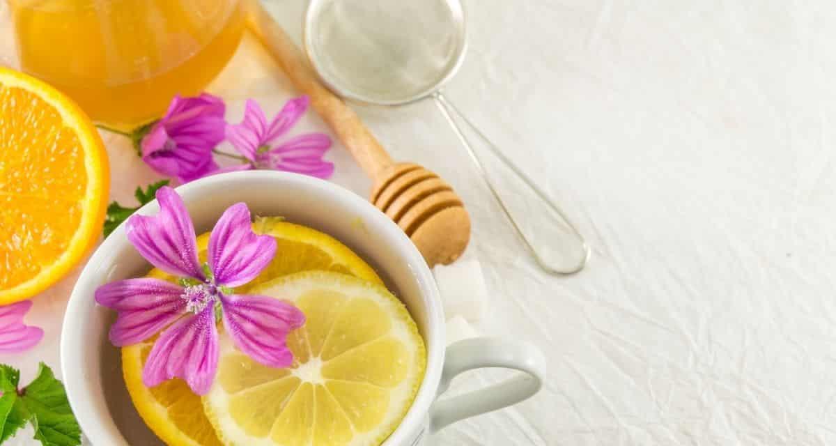 A minőségi tea kedvelői számára a piacon a tea sokfélesége elsöprő lehet. Ha lelkes teakedvelő vagy, de a legjobb teát választja ki magának, akkor ez az útmutató a legjobb tea márkák számára hasznos lesz. Felsoroltuk a legjobb teamárkákat minden teakategóriához, amelyet szeretne kipróbálni.