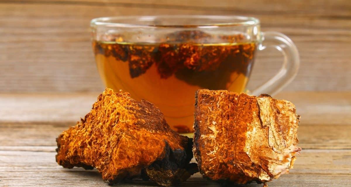 Nyírfakéreg tea egészségügyi előnyei.