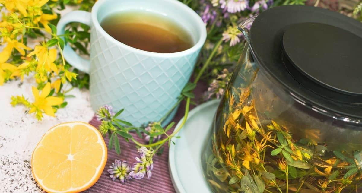 """Az orbáncfű ( Hypericum perforatum ) a Hypericaceae család virágos növénye, melyet élénk sárga virágairól neveztek el, és azt mondták, hogy Keresztelő Szent János születésnapja körül először virágoznak. A """"sörlé"""" szó óangolul """"növényt"""" jelent. Az orbáncfű tea hatásai, hogy úgy gondolják, hogy fokozza a hangulatot és enyhíti a depressziót, de nem teljesen világos, hogyan működik."""