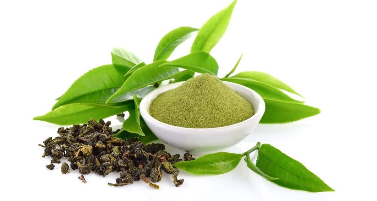 Jobb neked a zöld tea fogyasztása, mint a fekete? Koffeint tartalmaz? Segíthet-e a betegségek megszüntetésében? Minden típusú tea, még a szokásos csésze készítője is, a Camellia sinensis növényből származik. A zöld tea nevét a smaragdzöld színről kapta, amely a feldolgozatlan, erjesztetlen tealevelek főzésénél keletkezett. Az eredete 5000 évre nyúlik vissza, a zöld teát általában a Távol-Keleten iszák és széles körben termesztik, ahol az egészségügyi tulajdonságokat nagyra tartják.