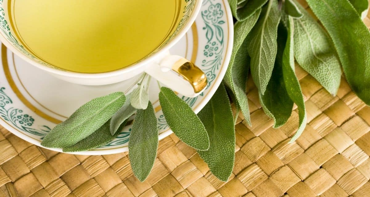 A zsálya teát a menta családba tartozó közönséges zsálya ( Salvia officinalis ) leveleiből készítik. Bár ismerheti a zsályát, mint kulináris gyógynövényt, a levelek gazdagok antioxidáns vegyületekben, például ellagsavban (eperben, málnában és dióban is) és rozmarinsavban (rozmaringban és bazsalikomban találhatók). Idáig rendben, de a zsálya tea mire jó? A támogatók azt állítják, hogy a zsálya tea segíthet bizonyos egészségi állapotokban, elősegítheti a fogyást és javíthatja a haj egészségét.