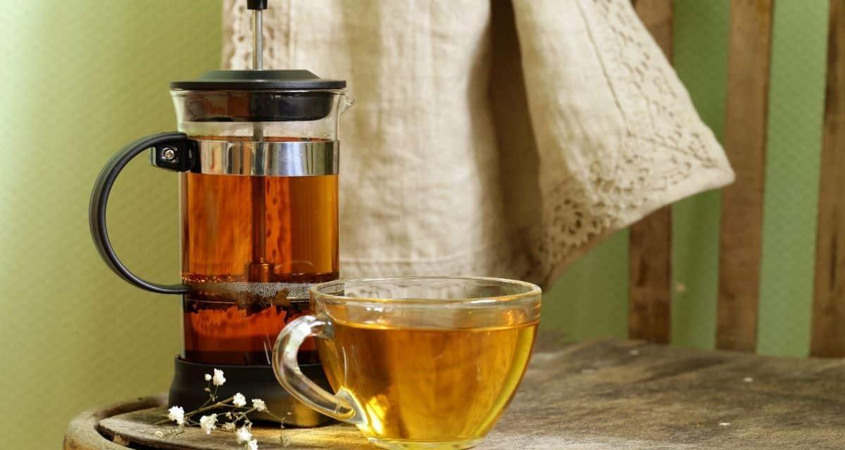 Olyan teát keres, amely javíthatja immunitását, miközben felfrissít? Itt van a filteres citromfű tea elkészítése receptje, amelyet otthon könnyen elkészíthetünk.
